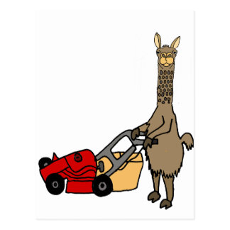 Funny Llama Pushing Lawn Mower Cartoon Postcard