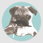 Funny Moustache Pug