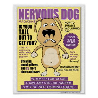 Funny Nervous Dog Magazine Poster