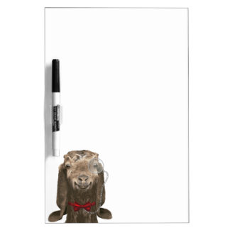 Funny Nubian Goat With Monocle Dry Erase Board