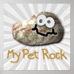 funny pet rock