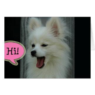 Funny Pom Hello Greeting Card