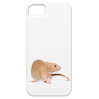 Funny red rat. iPhone 5 cover