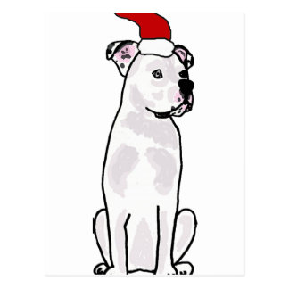 Funny White American Bulldog Christmas Design Postcard
