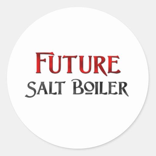 Future Salt Boiler Round Stickers
