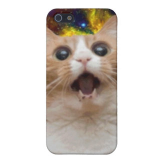 Galaxy cat iPhone 5 cover