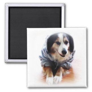 Gangsta Dog Wearing Hoodie Fridge Magnets