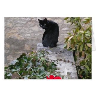 Garden Cat Birthday Card