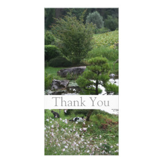Garden with Cats 2  Sympathy Thank You Photo Cards
