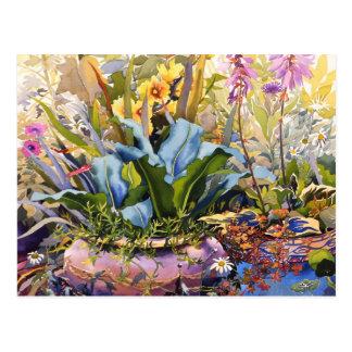 Garden with Plants 2000 Postcard
