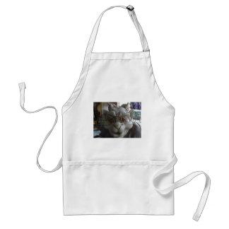 gargoyle 1 standard apron