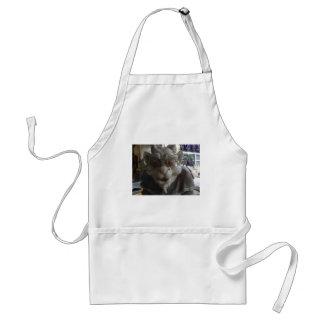gargoyle standard apron