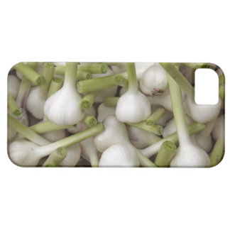 Garlic bulbs barely there iPhone 5 case