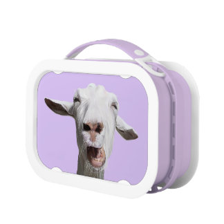 Gary the Goat lunchbox