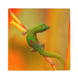 Gecko Wood Coaster