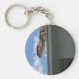 Geckozilla!!! Key Ring