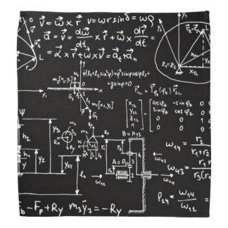 Geeky Math Mathematics Bandana