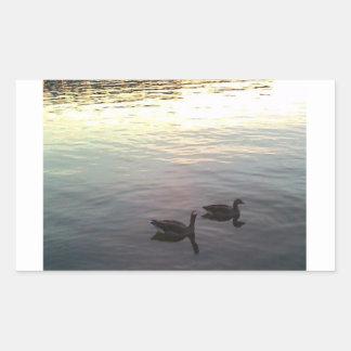 Geese at Sunset Rectangular Sticker