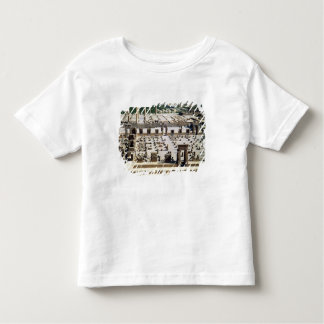 General view of the palace, Achaemenian Period Toddler T-Shirt