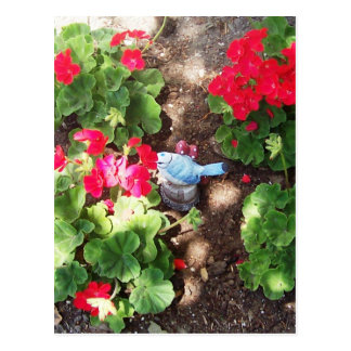 Geraniums and Bird Postcard