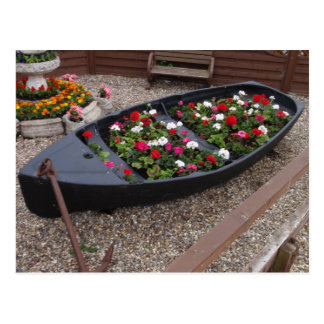 Geraniums In A Boat Postcard