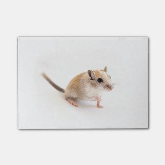 Gerbil Cute Baby Animal Pet Gerbils Template Post-it® Notes