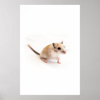 Gerbil Cute Baby Animal Pet Gerbils Template Poster