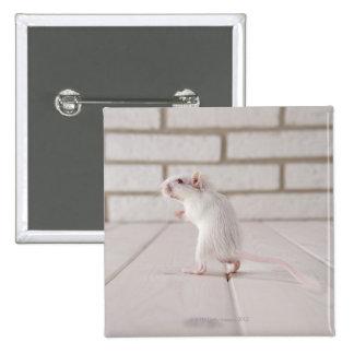Gerbil standing 15 cm square badge