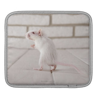 Gerbil standing sleeves for iPads