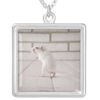 Gerbil standing silver plated necklace