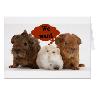 """GERBILS ARE SO READY TO CELEBRATE """"YOUR BIRTHDAY"""" CARD"""