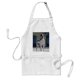 German Dogge, great dane, Hunde, Dogue Allemand Adult Apron