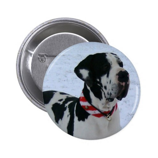 German Dogge, great dane, Hunde, Dogue Allemand Pin