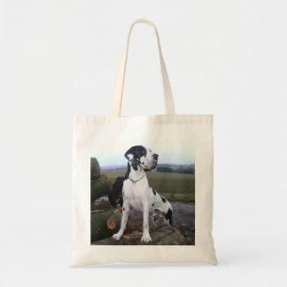 German Dogge, great dane, Hunde, Dogue Allemand Budget Tote Bag