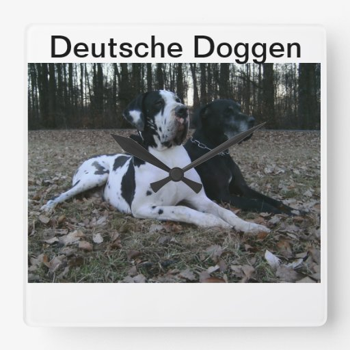 German Dogge, great dane, Hunde, Dogue Allemand Clock