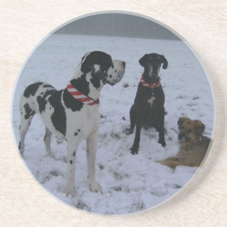 German Dogge great dane Hunde Dogue Allemand Coasters