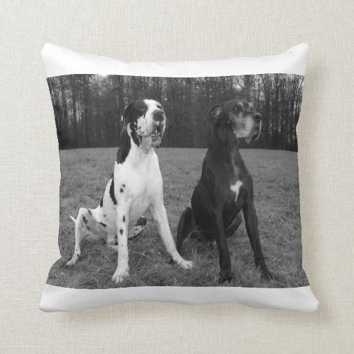 German Dogge, great dane, Hunde, Dogue Allemand Throw Pillows