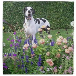 German Dogge, great dane, Hunde, Dogue Allemand Napkin