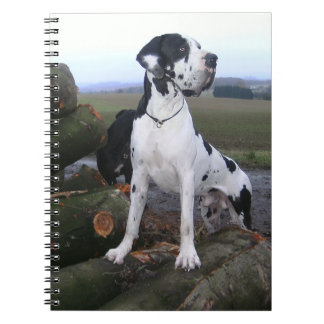 German Dogge, great dane, Hunde, Dogue Allemand Note Books