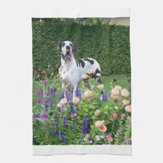 German Dogge, great dane, Hunde, Dogue Allemand Towel