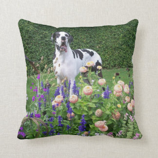 German Dogge, great dane, Hunde, Dogue Allemand Throw Pillow