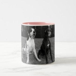 German Dogge, great dane, Hunde, Dogue Allemand Two-Tone Mug