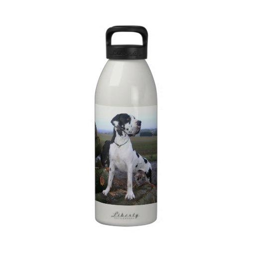 German Dogge, great dane, Hunde, Dogue Allemand Drinking Bottles