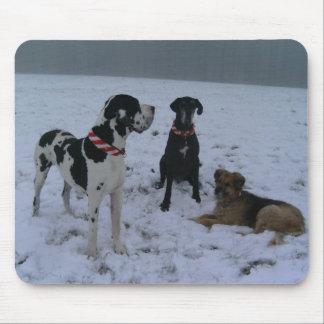 German Dogge, great dane, Hunde, Weihnachten Mousepads