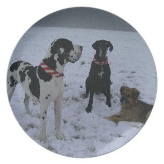 German Dogge, great dane, Hunde, Weihnachten Party Plate
