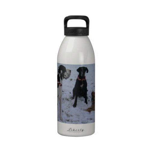 German Dogge, great dane, Hunde, Weihnachten Water Bottle