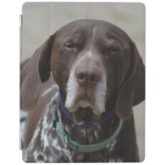 German Shorthaired Pointer Dog iPad Cover
