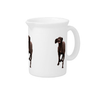 German Shorthaired Pointer Pet-lover Pitcher