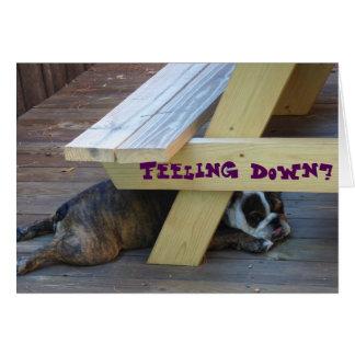 Get well, Encouragement card starring a bulldog