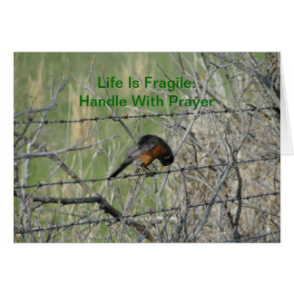 Get Well, Robin In Prayer Greeting Card